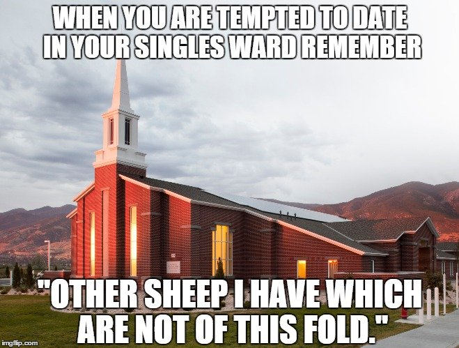 "When you are tempted to date in your singles ward remember ""Other sheep I have which are not of this fold."""